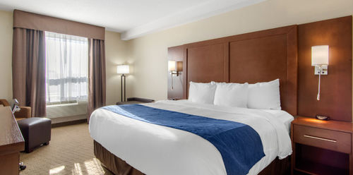 Comfort Inn & Suites Medicine Hat Business King